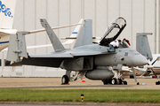 McDonnel Douglas/Boeing F/A-18F Super Hornet
