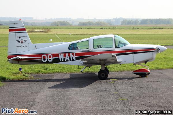 GRUMMAN AA-5B (Kortrijk Flying Club)