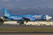 Boeing 737-490 (N706AS)