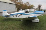 Jodel D-119 (F-PLUQ)