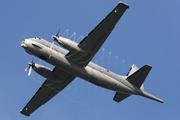 Breguet/Dassault Atlantique ATL2 (9)