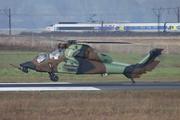 Eurocopter EC-665 HAP Tigre (BHJ)