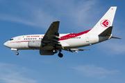 Boeing 737-6D6 (7T-VJS)