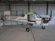 Reims F152 (F-GDDM)