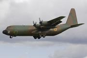 C-130J-30 Hercules (L382) (TJX-CE)