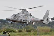 Eurocopter AS-565SA Panther (519)
