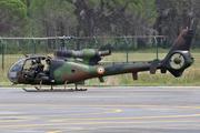 Aérospatiale SA-342M Gazelle (F-MGNP)