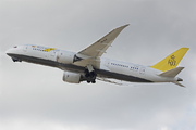 Boeing 787-8 Dreamliner (V8-DLB)