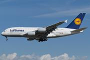 Airbus A380-841 (D-AIME)