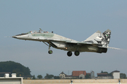 Mikoyan-Gurevich MiG-29UBS (5304)