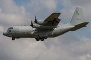 Lockheed Tp84 Hercules (L-382) (84004)