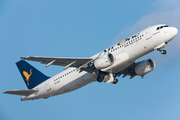 Airbus A320-216/WL (EI-DSZ)