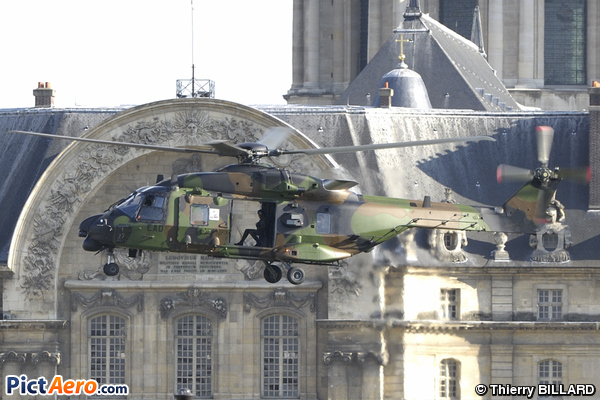 NH Industries NH-90 TTH (France - Army)