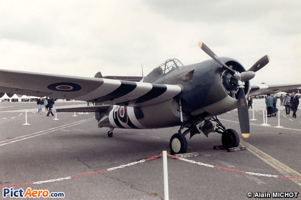 Grumman FM-2 Wildcat (The Fighter Collection)