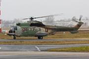 Eurocopter EC-225-LP Super Puma (A4O-HE)