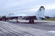 Sukhoi Su-27 (24)