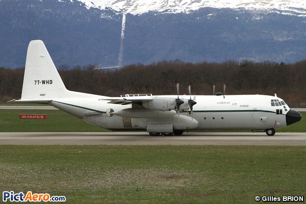Lockheed C-130H-30 Hercules (L-382T) (Algeria - Air Force)