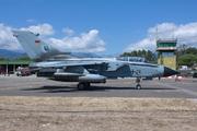 Panavia Tornado IDS (4478)