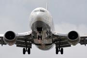 Boeing 737-530 (D-ABIN)