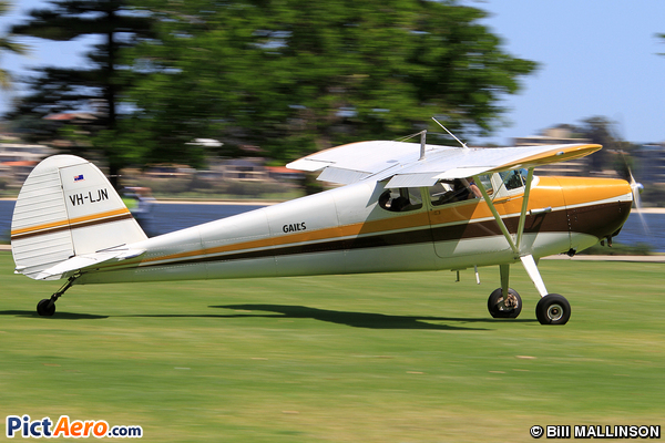 Cessna 170 A (Private)