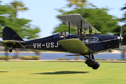 De Havilland DH-83C Fox Moth (VH-USJ)