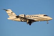 Canadair CL-600-2B16 Challenger 605 (M-MSGG)