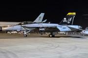 McDonnel Douglas/Boeing F/A-18F Super Hornet (166620)