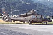 Westland WG-13 Lynx AH7 (ZO278)
