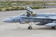 McDonnell Douglas EF-18A Hornet (C.15-67)