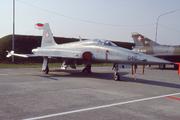 Northrop F-5E Tiger II (J-3046)
