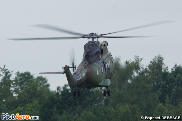 Aérospatiale SA-330B Puma (France - Army)