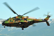 NH Industries NH-90 TTH (EAF)