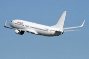 Boeing 737-800 (BBJ2/C-40) (D-AHFS)