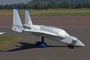 Rutan 61 Long-EZ