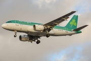 Airbus A319-111 (EI-EPU)
