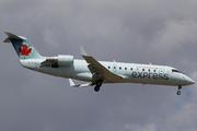 CRJ-100ER (Canadair CL-600-2B19 Regional Jet) (C-FWJI)