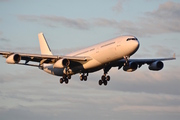 Airbus A340-313X (CS-TQY)