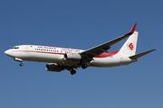 Boeing 737-8D6 (7T-VJK)