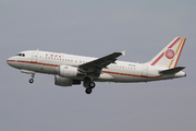 Airbus A319-115ACJ  (VP-CIA)