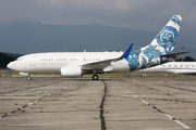 Boeing 737-7CJ/BBJ (N737ER)