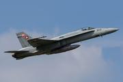 McDonnell Douglas F/A-18C Hornet (J-5003)