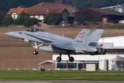 McDonnell Douglas F/A-18C Hornet (J-5008)