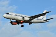 Airbus A319-115X/CJ (OE-LGS)