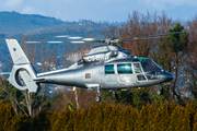 Eurocopter AS-365N-1 Dauphin 2 (CS-HHW)
