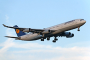 Airbus A340-311 (D-AIGA)