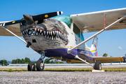 Cessna 172N Skyhawk (EC-FOO)