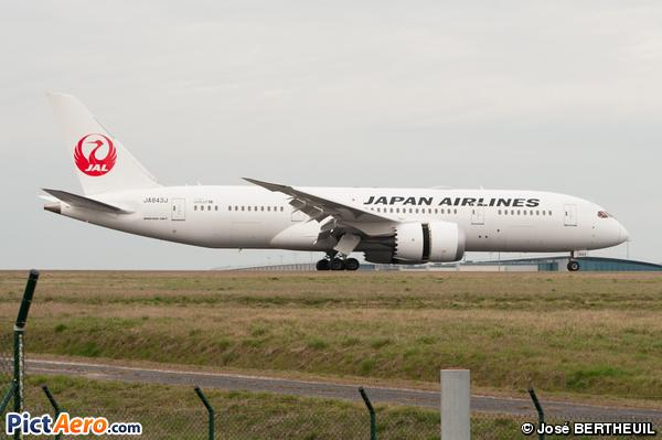Boeing 787-8 Dreamliner (Japan Airlines (JAL))