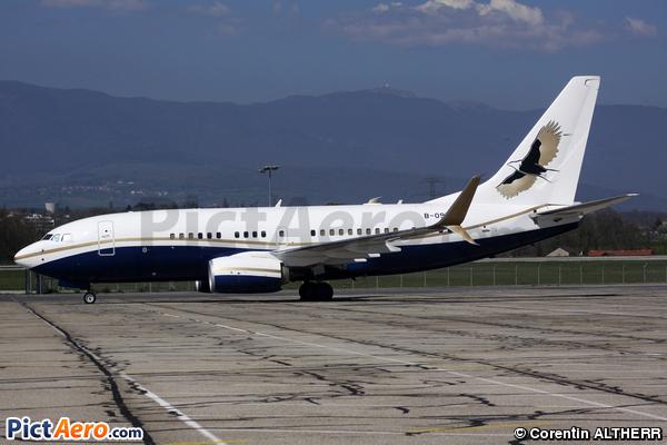 Boeing 737-79V BBJ (Ruentex Group)