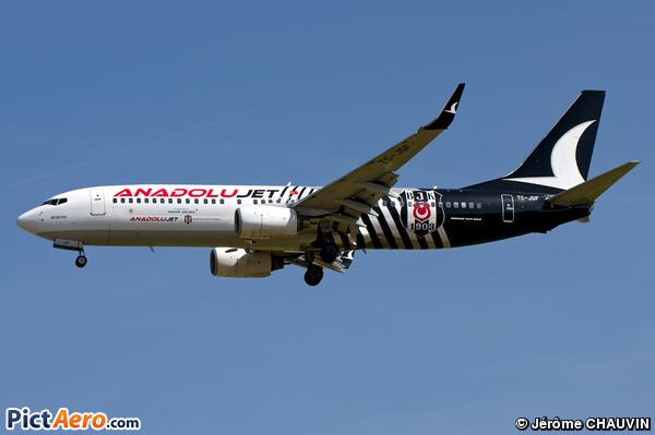 Boeing 737-800 (BBJ2/C-40) (AnadoluJet (Turkish Airlines (Atlasjet Airlines)))