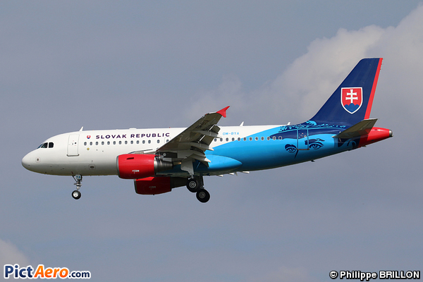 Airbus A319-115X/CJ (Slovakia - Government Flying Service)